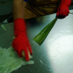 making of aloe vera